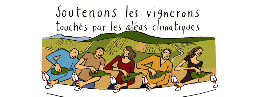 Image du projet Vendanges Solidaires