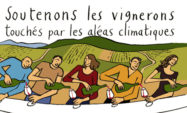 Project visual Vendanges Solidaires