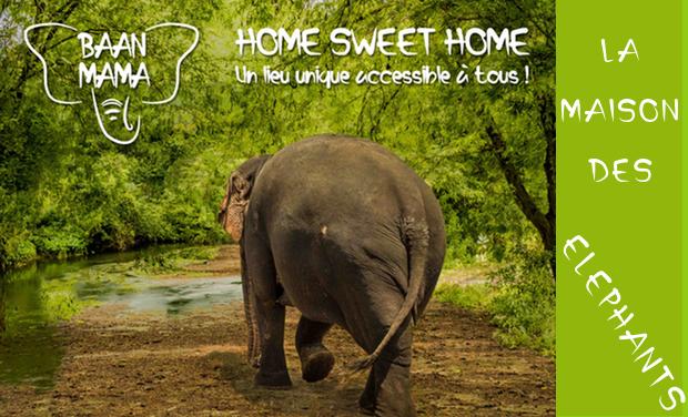 Visuel du projet Baan Mama - Éléphants : Home Sweet Home !