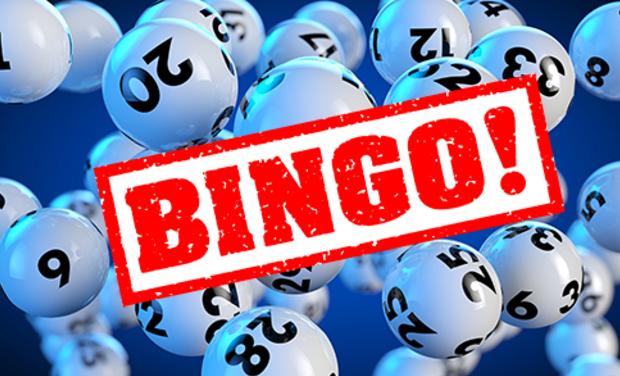 Visuel du projet Bingo!