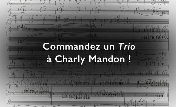 Visuel du projet Commandez un Trio à Charly Mandon !