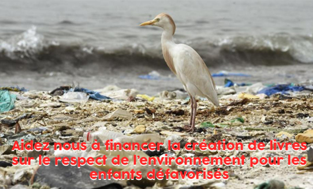 Project visual Création de livres éducatifs sur le respect de l'environnement