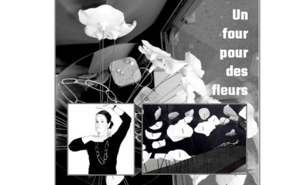 Visuel du projet Un four pour des fleurs en porcelaine !