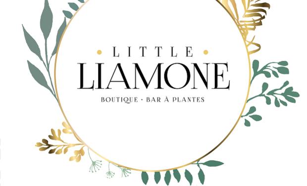 Visuel du projet Little Liamone - Boutique, Bar à plantes