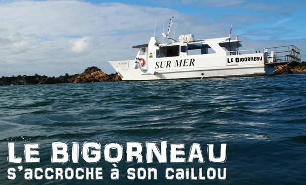 Image du projet LE BIGORNEAU s'accroche à son caillou