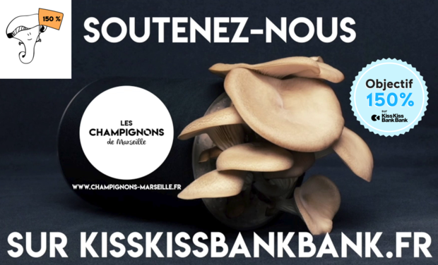 Project visual Les Champignons de Marseille