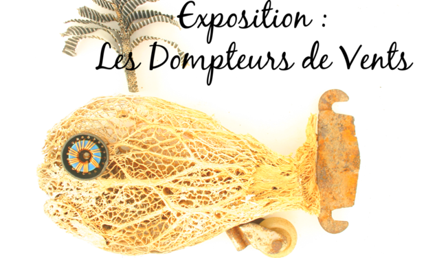 Project visual Exposition : Les Dompteurs de Vents