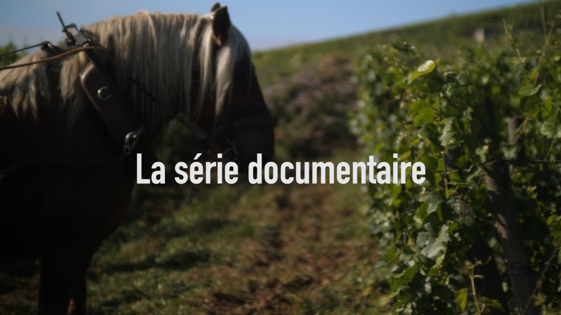 Image du projet Juste devant nous - la série documentaire
