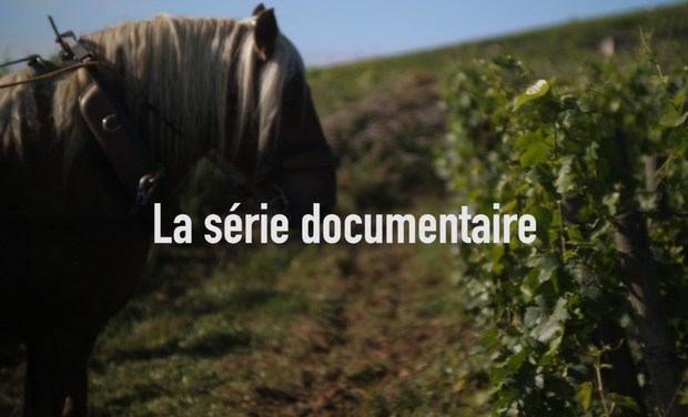 Project visual Juste devant nous - la série documentaire