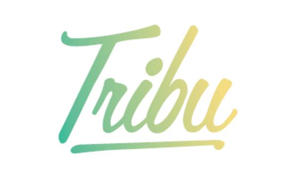 Visuel du projet Tribu News - Le journal de famille qui reconnecte les générations -