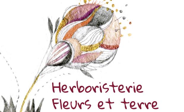 Project visual Herboristerie Fleurs et terre