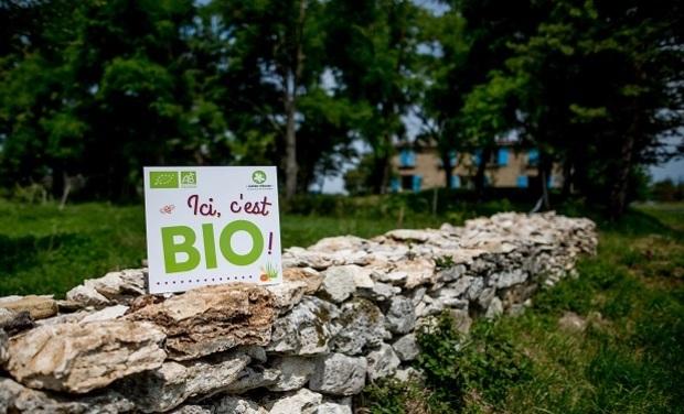 Image du projet Les Saveurs du Bois du Roc