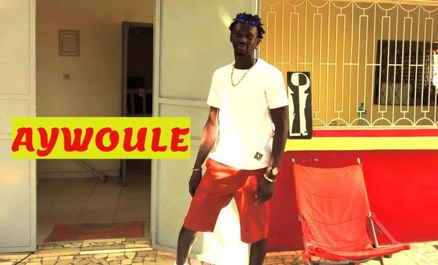 Visuel du projet Aywoule