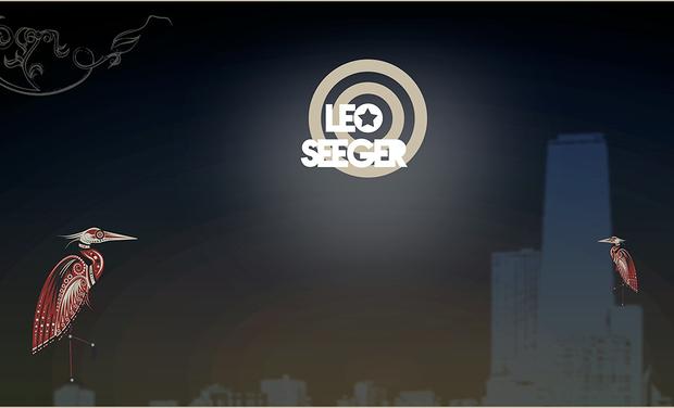 Visuel du projet Nouvel album de Leo Seeger