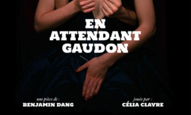 Visuel du projet En attendant Gaudon à Avignon