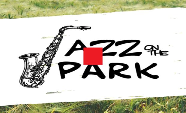 Visuel du projet 1ère édition du festival Jazz on the Park