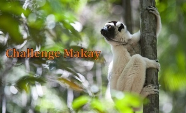 Project visual Challenge Makay