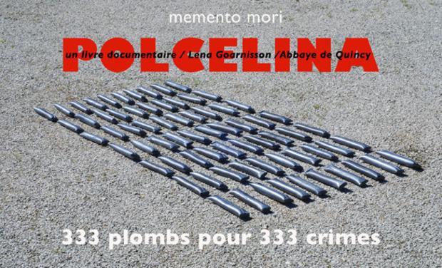 Visuel du projet POLCELINA