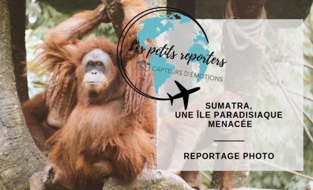 Visuel du projet Sumatra, une île paradisiaque menacée