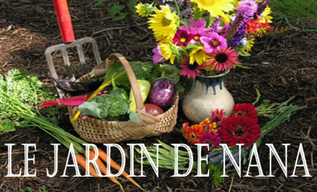 Visueel van project Le Jardin de Nana