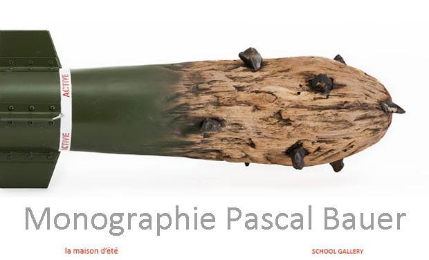 Visuel du projet Monographie Pascal Bauer