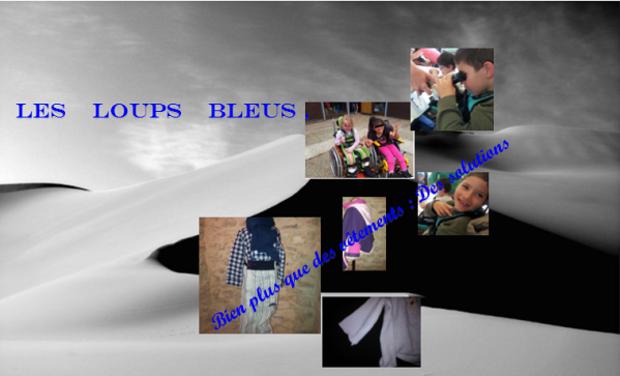 Visueel van project Les loups bleus , des vêtements joyeux pour enfants extraordinaires