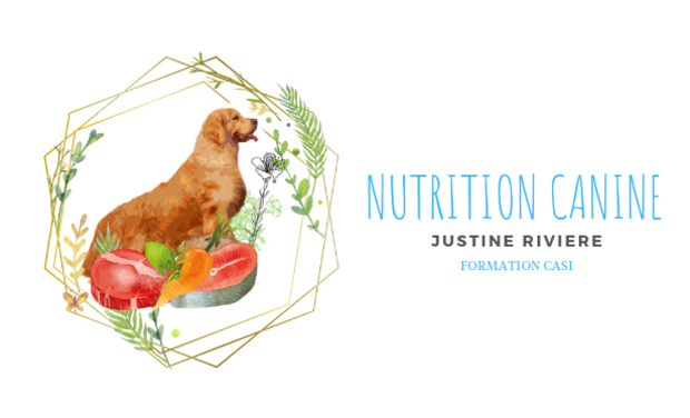 Project visual Formation en nutrition canine