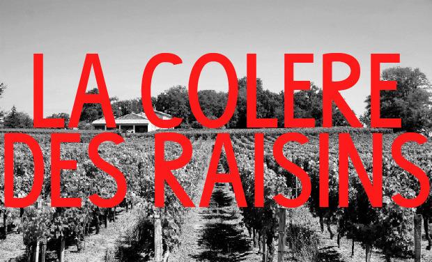 Large_banniere-colereraisins-01