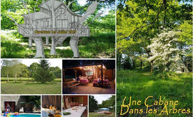 Visuel du projet Une cabane dans les arbres