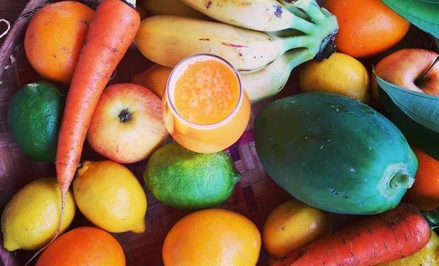 Project visual Les délices de Nini 100% bio - Bar à jus nomade et pâtisseries crues végétales