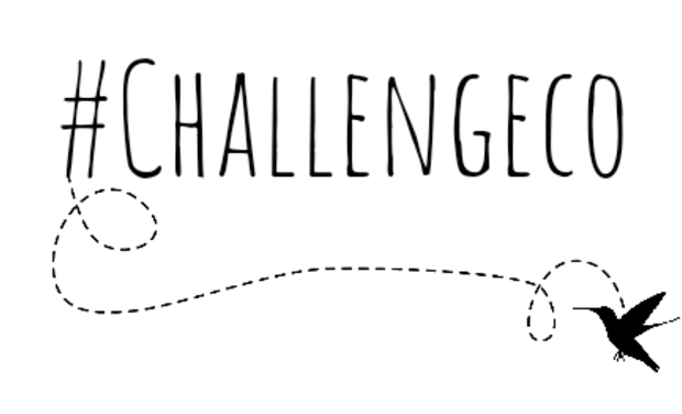 Visueel van project Challengeco
