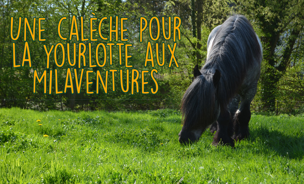 Project visual La yourlotte aux Milaventures