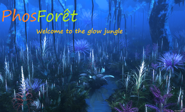 Visuel du projet PhosForêt - welcome to the glow jungle
