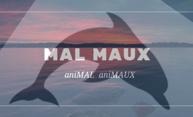 Visueel van project aniMAL -aniMAUX