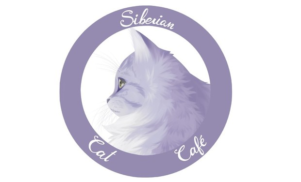 Visuel du projet Siberian Cat Café, bar à chats hypoallergéniques et bien plus!