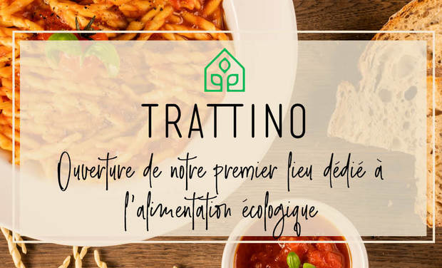 Project visual Trattino