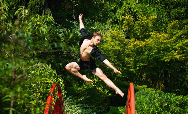 Project visual Dernière année d'étude en ballet professionnel