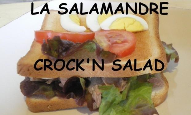 Visuel du projet La salamandre crock'n salad