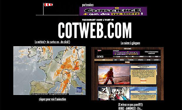 Large_cotweb6302