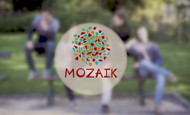 Project visual Mozaïk