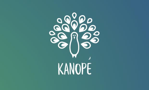Visuel du projet Le Kombucha Kanopé: La boisson probiotique produite en Vallée de Chevreuse