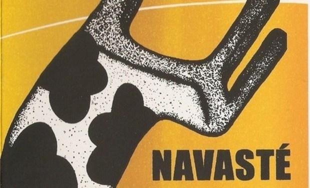 Visuel du projet Enregistrement du nouvel album de Navasté