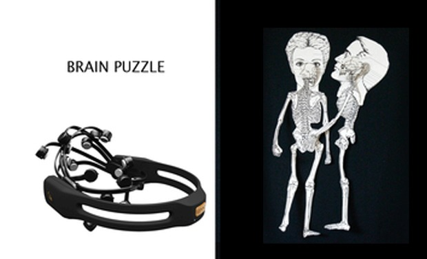 Project visual Brain puzzle