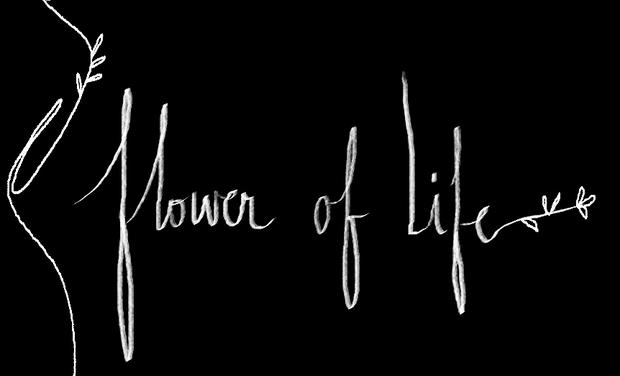 Visuel du projet FLOWER OF LIFE
