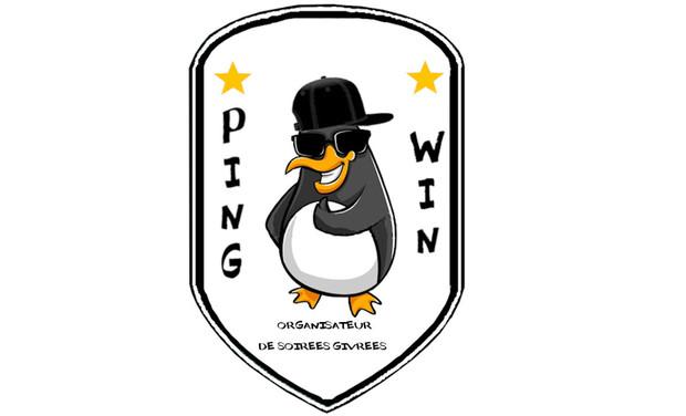 Visuel du projet Ping Win - ❄ Organisateur de soirées givrées ❄ 🐧🐧