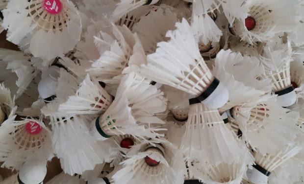 Visuel du projet compo'plume: passer du volant de badminton à un matériau pour le mobilier!