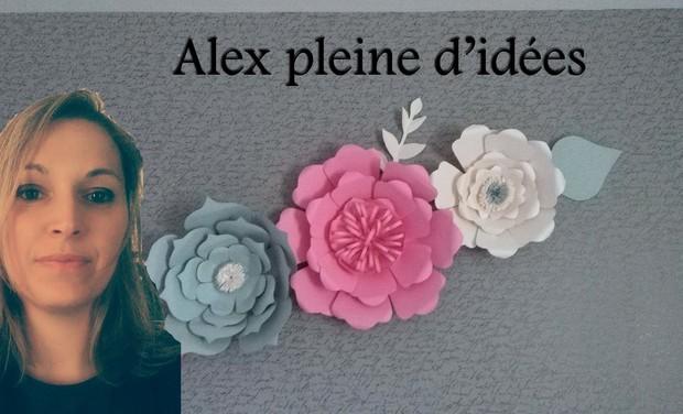 Visuel du projet Alex pleine d'idées et ses fleurs géantes