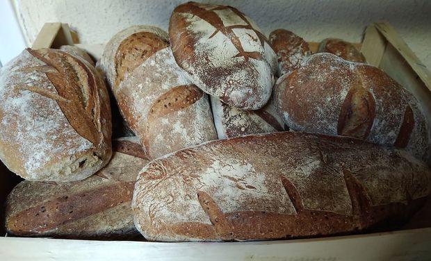 Visuel du projet Un projet alliant le pain et l'humain