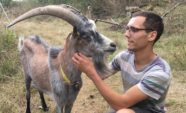 Visuel du projet La chèvrerie de Rémy