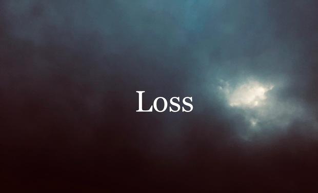 Visuel du projet LOSS